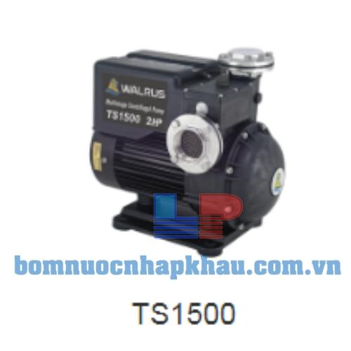 Máy bơm dân dụng đẩy cao Walrus TS-1500