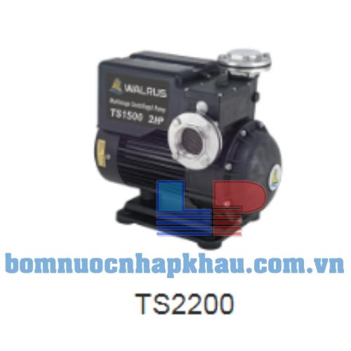 Máy bơm dân dụng đẩy cao Walrus TS-2200