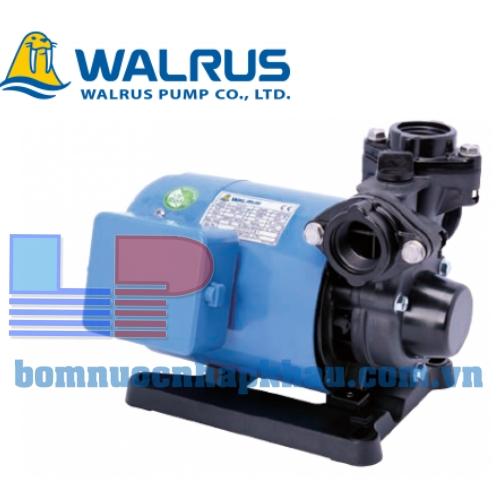 Máy bơm nước bánh răng đẩy cao Walrus TP325-1HP